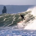 Cangaroo - catch the wave