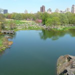 Turtle Pond, Central Park, New York City